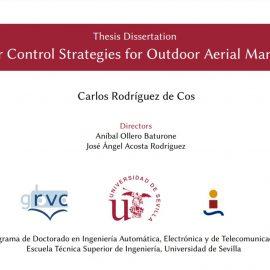 PhD Thesis Presentation by Carlos Rodríguez de Cos